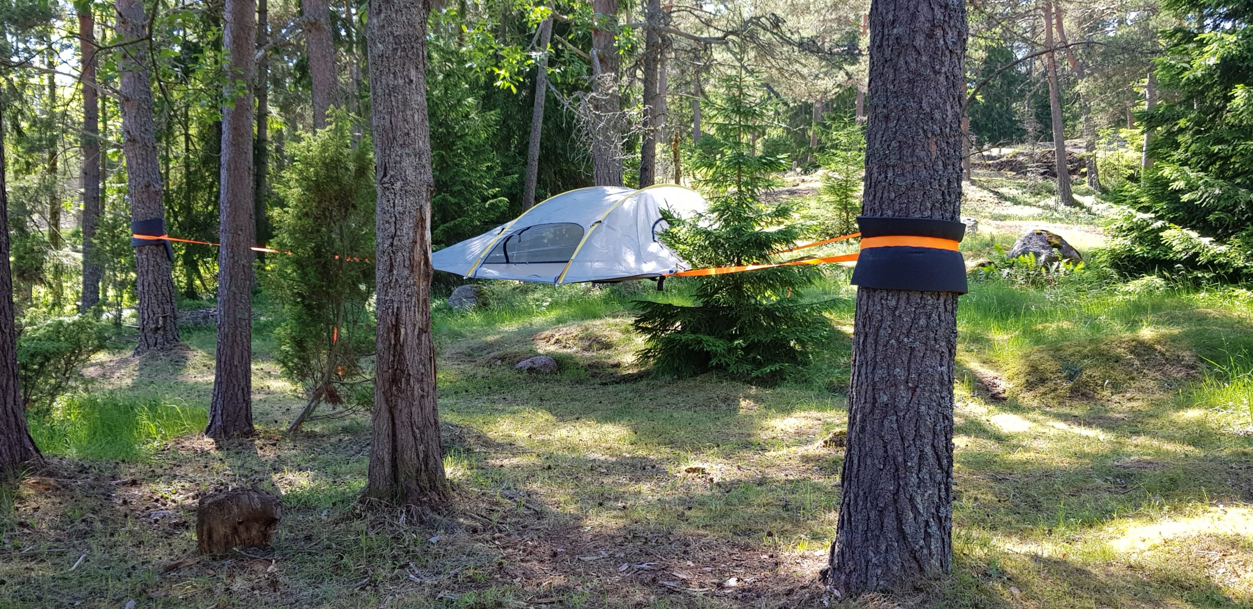 Tree tent in the forest