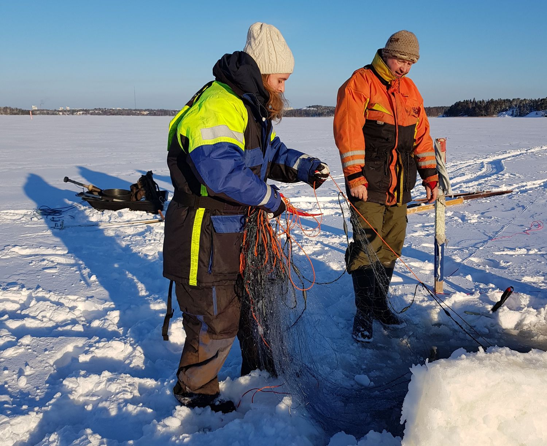 Ice fishing on Baltic Sea